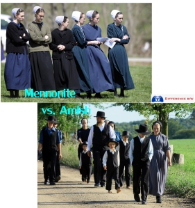 amish-vs-mennonite